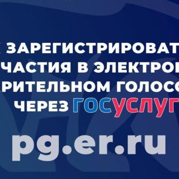 Открыта регистрация для участия в электронном предварительном голосовании через ГОСУСЛУГИ